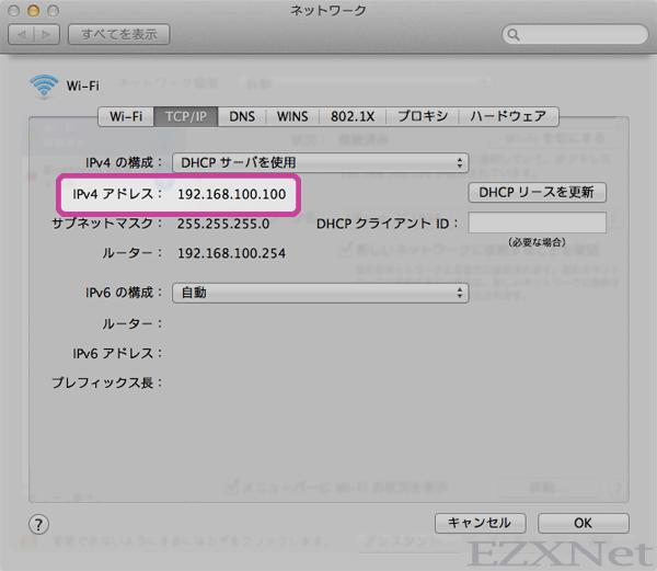 TCP/IPのタブをクリックします。IPv4アドレスもしっかりとれています。