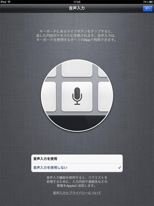 """ここでは""""音声入力を使用しない""""を選択。"""